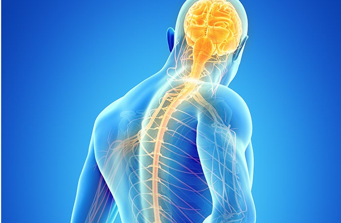 peripheral nerve surgery raleigh cary brier creek nc